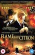 image of Flame and Citron DVD cover